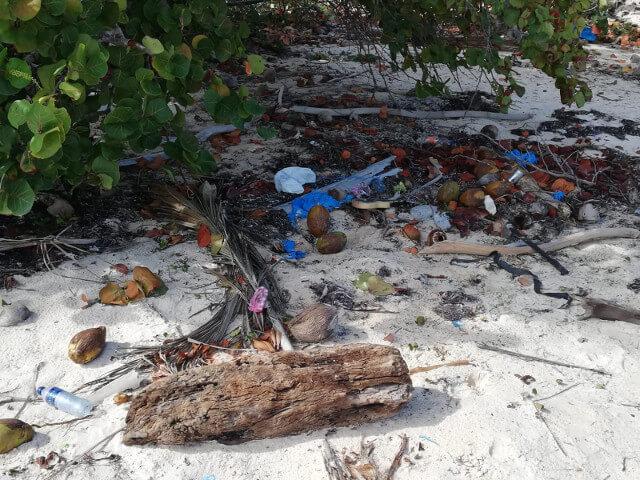 Plastic at a Beach - Seas & Straws