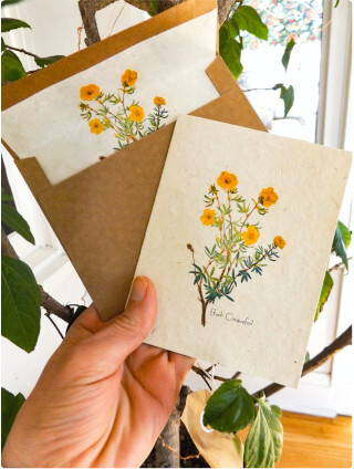 Plantable, handpainted card with seeds. Seas & Straws